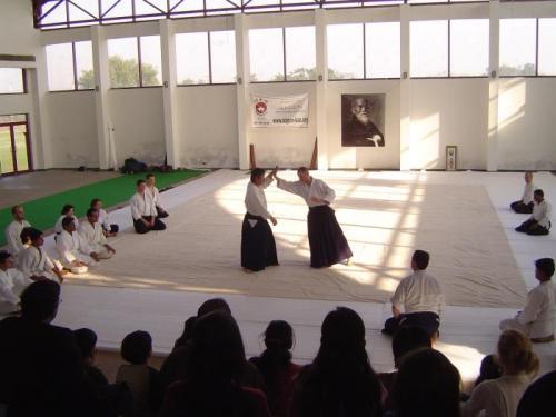 Aikido seminar 016