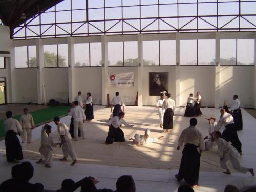 Aikido seminar 027