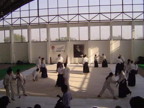 Aikido seminar 030